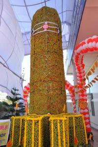 21 FOOT SHIVLING, WONDER BOOK OF RECORD, INTERNATIONAL, LONDON